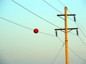 powerlines_floaters