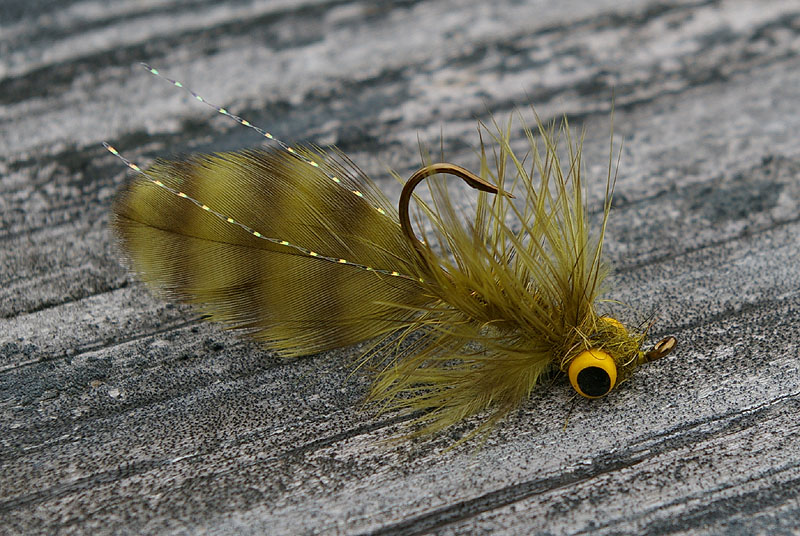 Fly tying for Where can i buy a fishing license near me